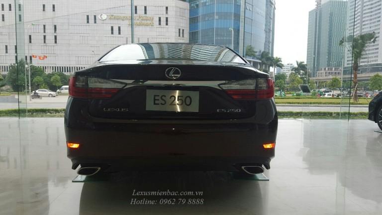 duoi-xe-lexus-es-250-2017